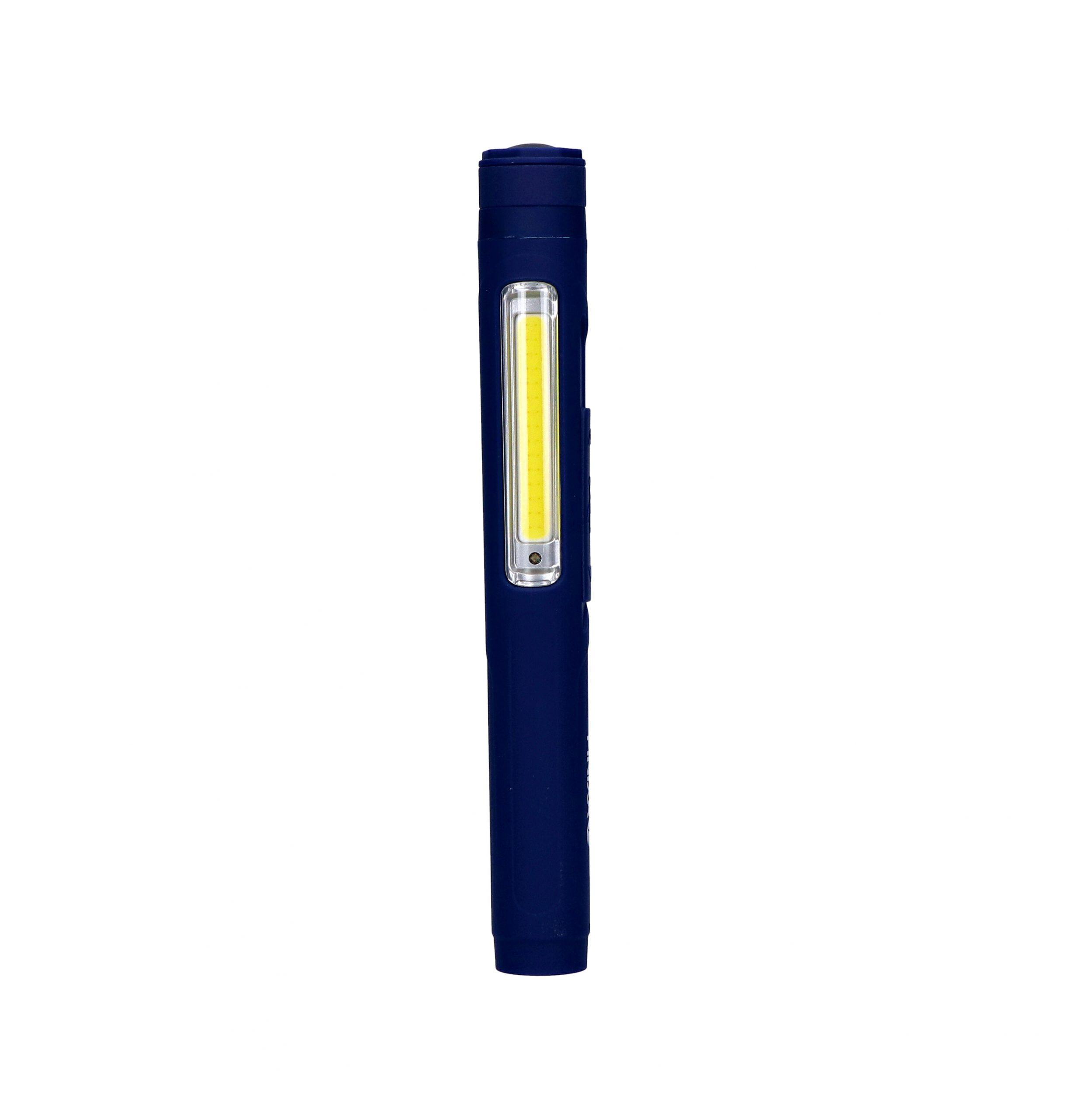 Dual Pen Light